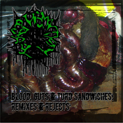 BloodGutsTurdSandwiches-RemixesRejects-ThumbnailCover.jpg